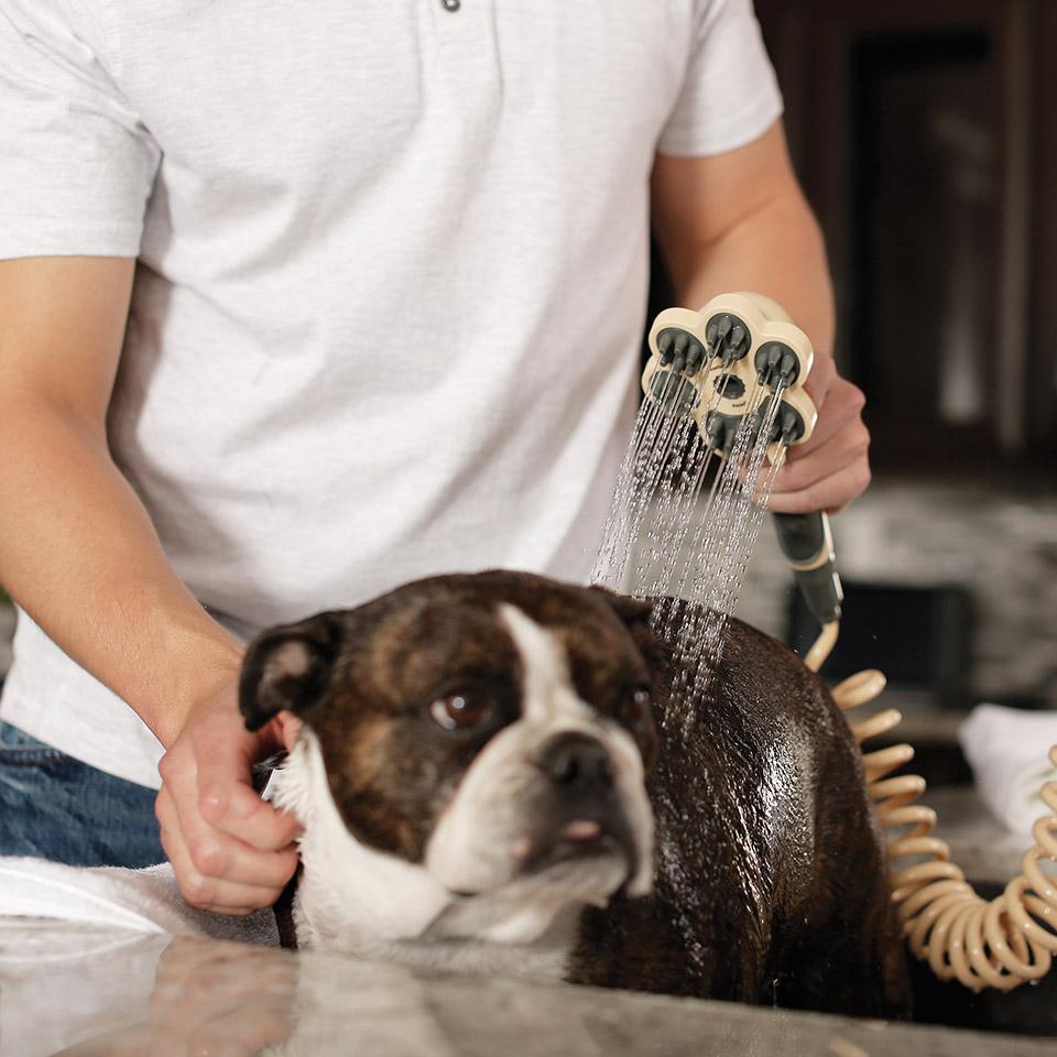 Oxygenics PawSpa PetJet - słuchawka prysznicowa dla zwierząt -